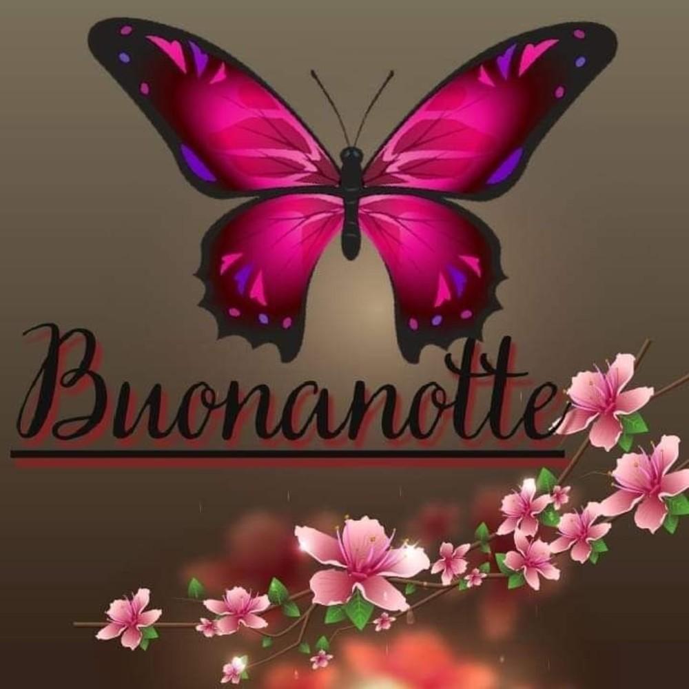 Belle Immagini Buonanotte Favolose 24 Buongiornocolsorriso It
