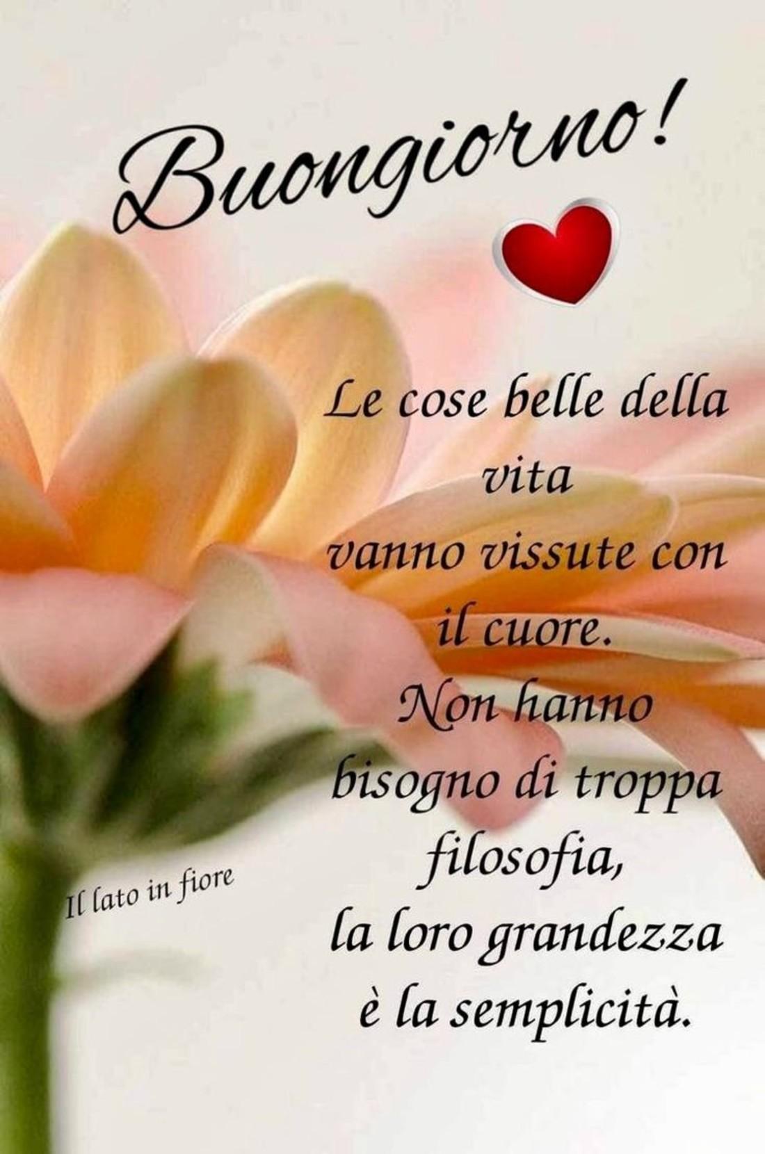 Buongiorno amici immagini 8 for Immagini belle buongiorno amici