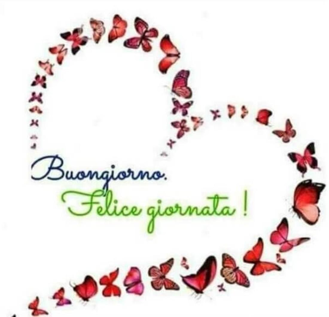 Buongiornocon Volo Di Farfalle Buongiornocolsorriso It