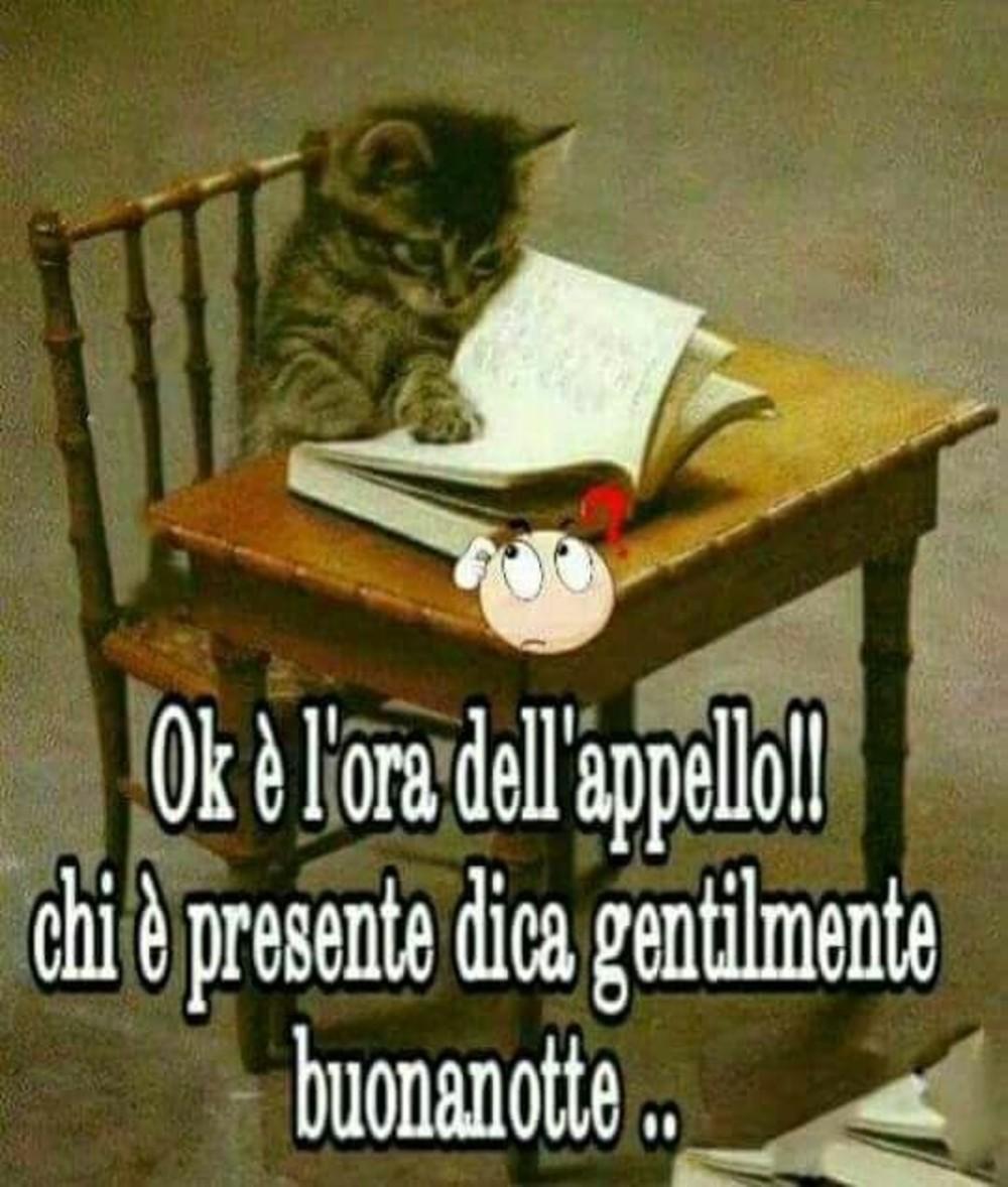 Immagini Buonanotte Gatti 7 Buongiornocolsorriso It