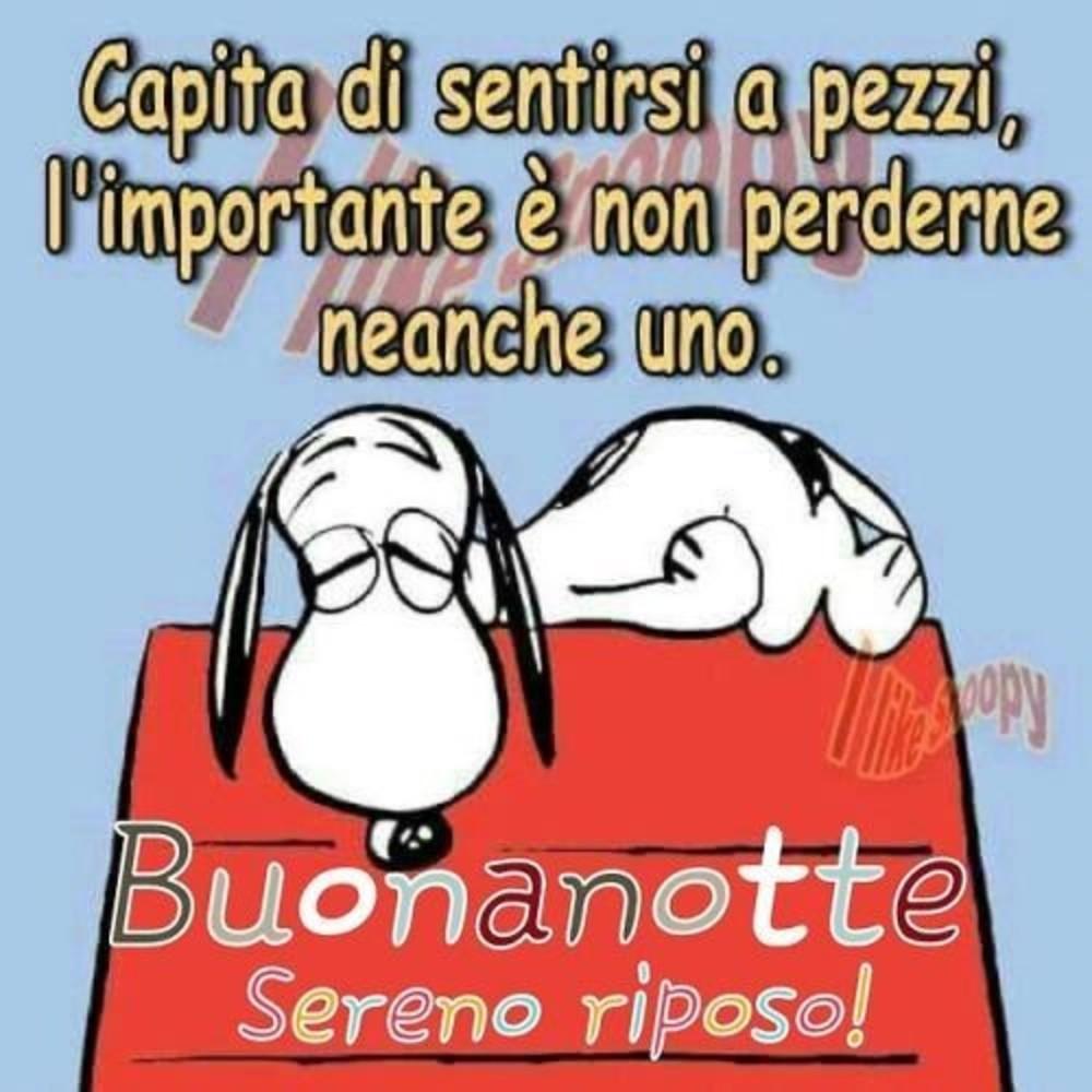 I Like Snoopy Qualche Vignetta Nel Delirio Non Ero Mai Sola