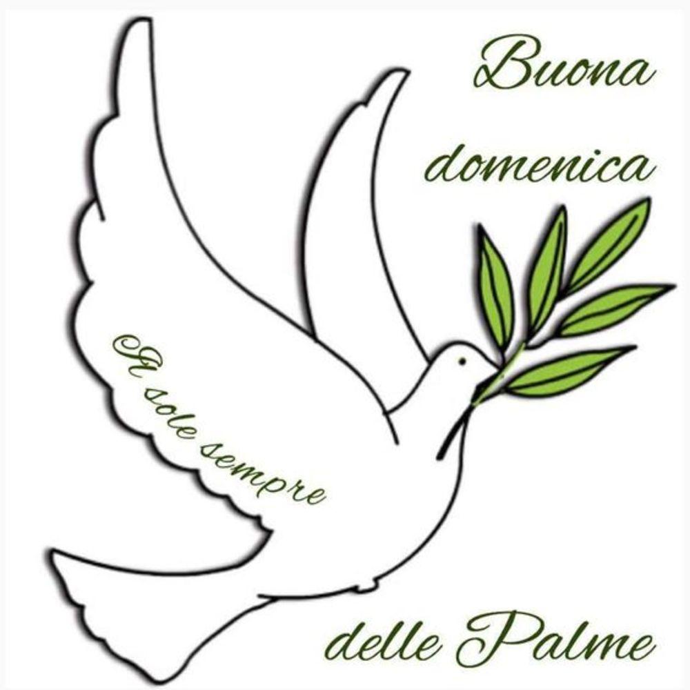 belle immagini colombe domenica delle palme (1)
