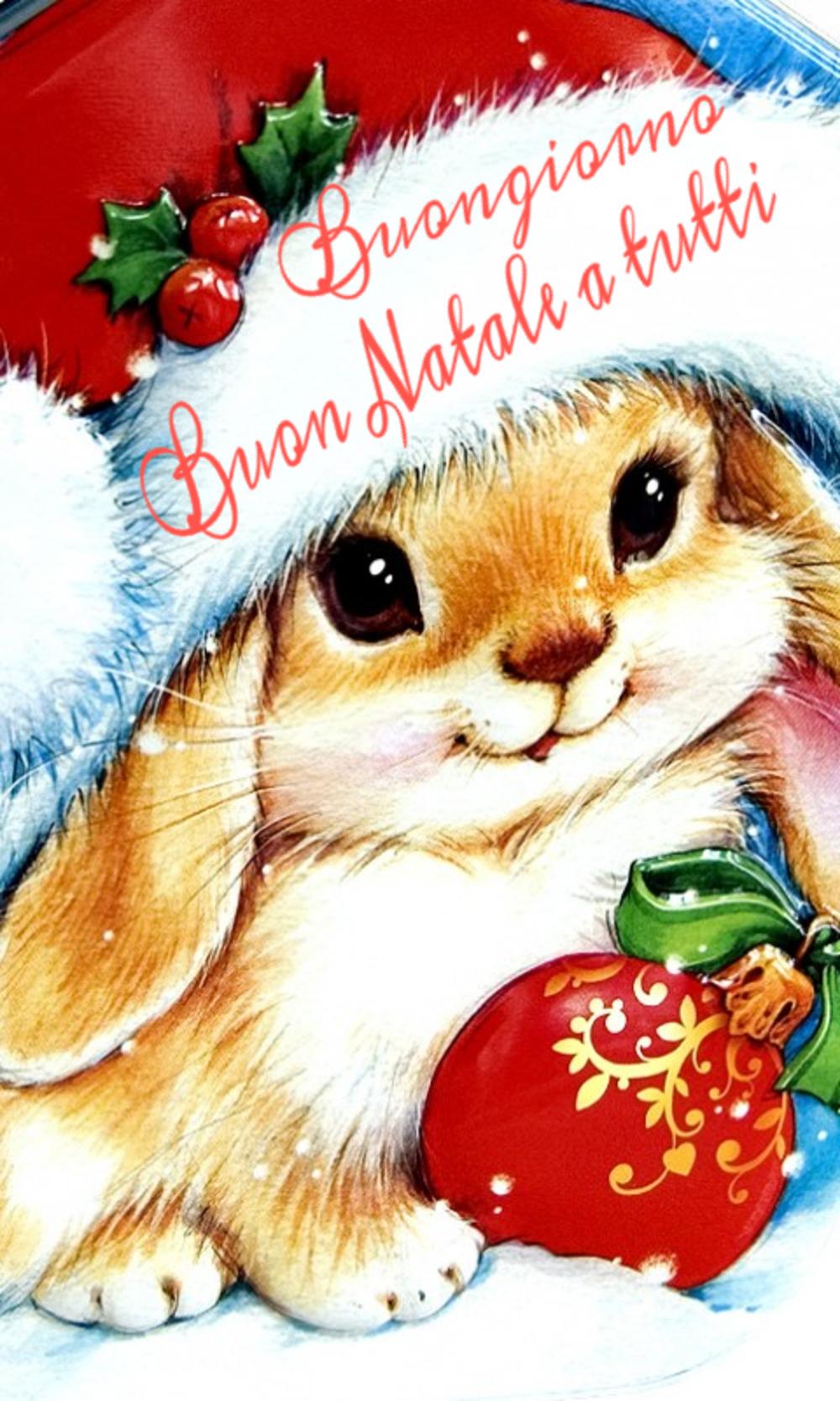 belle immaigni buon natale coniglietto